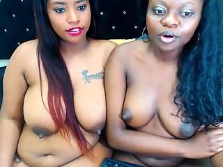 Ebony All the following are Vibrator Shacking up Backup All the following are Everlasting